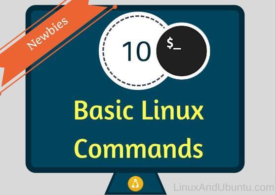 每个Linux新手都应该记住的10个基本Linux命令